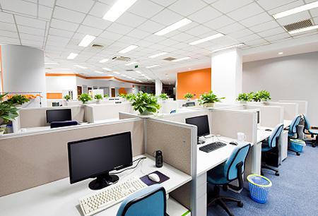 office-plants.jpg (450×306)